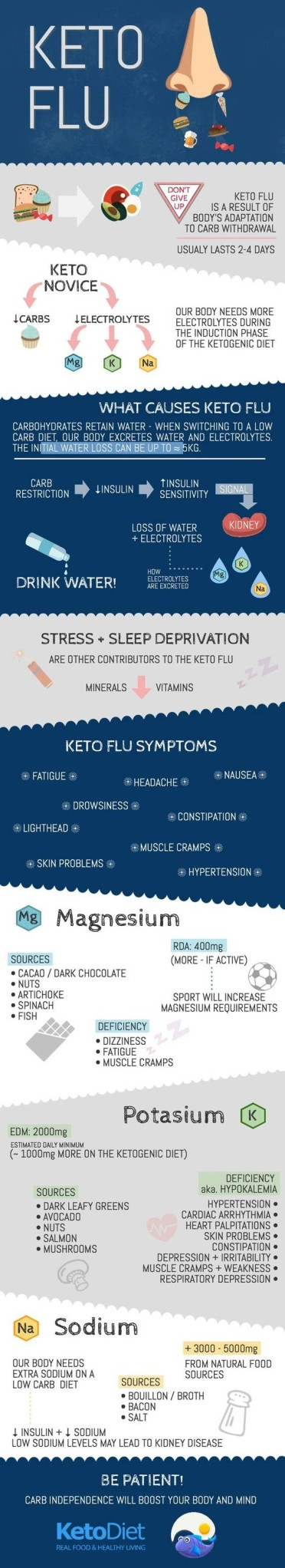 Ketosis Infographic