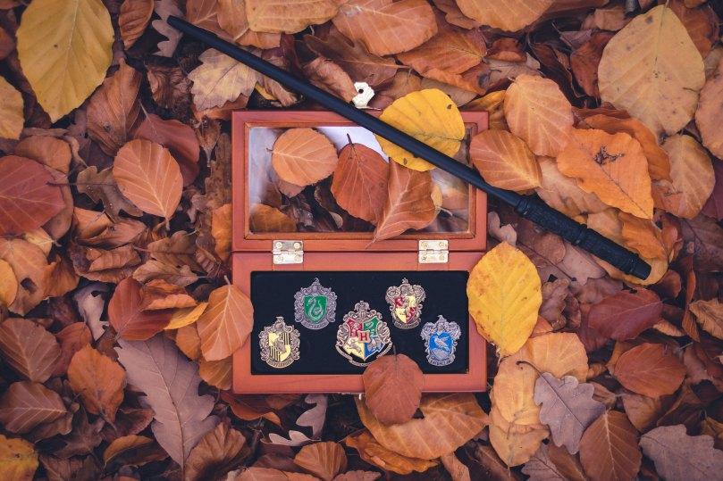 hogwarts pins and wand